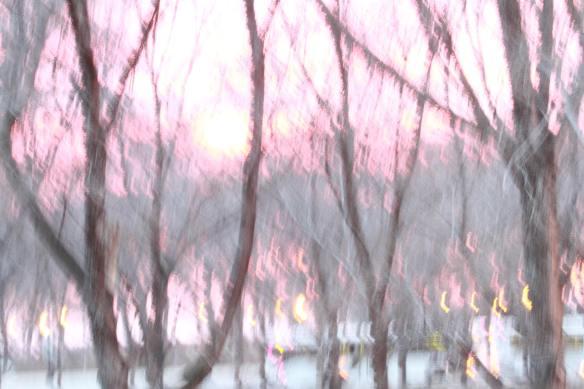 Sunrise IMG_8845_1