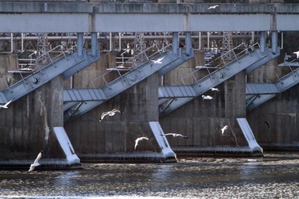 Lock and Dam 13, Illinois Waterway Visitor's Center