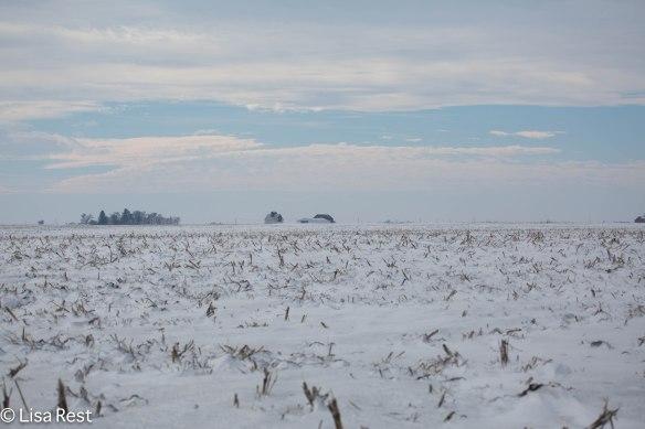 Lee County farm field