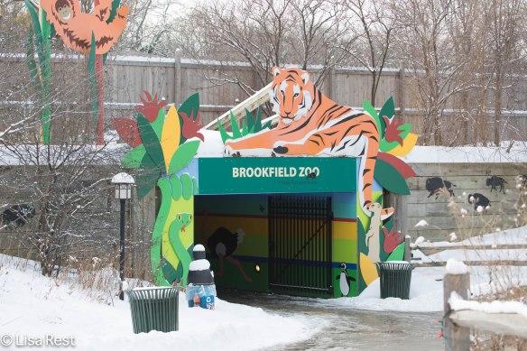 Brookfield Zoo North entrance 2-2-14 112A1960.jpg-1960
