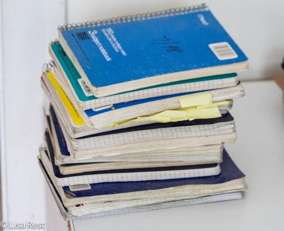 Journals 3-1-14 6200.jpg-6200