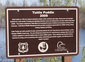 Tuttle Puddle Sign-3778