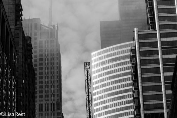 Fog 6-25-14-2013