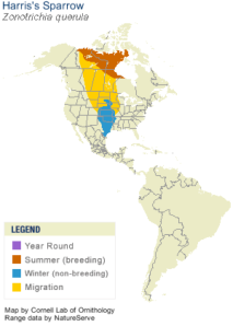 Harris's Sparrow Range Map - Cornell
