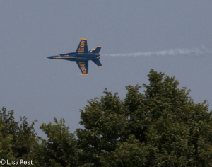 Blue Angels 8-14-15-9148