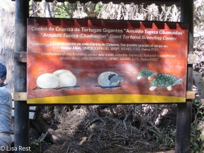 giant-tortoise-welcome-sign-7-13-16-0333